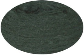 0484 Forest green